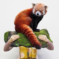 I AM LIL RED PANDA - 100 Pieces Madd Capp Puzzles